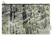 Art Print Canyon 19 Carry-all Pouch