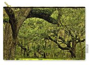Artistic Live Oaks Carry-all Pouch