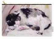 Artist's Cat Sleeping Carry-all Pouch