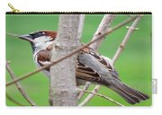 Perching Sparrow Carry-all Pouch