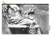 Asclepius Carry-all Pouch