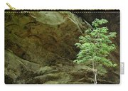 Ash Cave Tree Carry-all Pouch