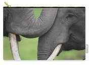 Asian Elephant Greeting Carry-all Pouch