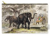 Asiatic Elephant With Young, 19th Carry-all Pouch