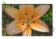 Asiatic Lily With Poster Edges Carry-all Pouch