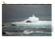 Asilomar Mini Seascape Carry-all Pouch