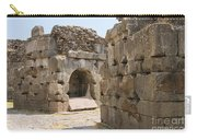 Asklepios Temple Ruins Carry-all Pouch