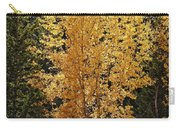 Aspen Gold Carry-all Pouch by Kelley King