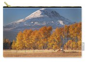 Aspen Grove And Mt Adams Carry-all Pouch