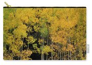 Aspen Haven  Carry-all Pouch by Ron Cline