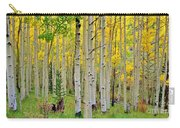 Aspen Slope Carry-all Pouch