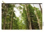 Aspens Galore Carry-all Pouch by Rick Furmanek