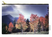 Aspens In Autumn Light Carry-all Pouch