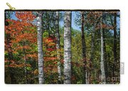 Aspens In Fall Forest Carry-all Pouch