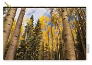 Aspens In Santa Fe 3 Carry-all Pouch