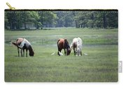 Assateague Island - Wild Ponies And Their Buddies  Carry-all Pouch
