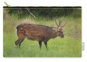 Assateague Sitka Deer Carry-all Pouch