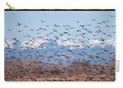 At Barr Lake Carry-all Pouch