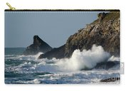 Atlantic Splash Carry-all Pouch