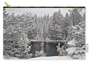 Au Sable River Overlook Carry-all Pouch