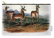 Audubon: Antelope, 1846 Carry-all Pouch