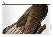 Audubon: Bald Eagle Carry-all Pouch