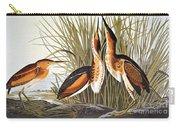 Audubon: Bittern Carry-all Pouch