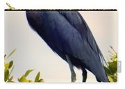 Audubon Blue Carry-all Pouch