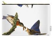 Audubon: Bluebird Carry-all Pouch
