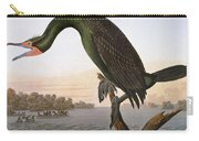 Audubon: Cormorant Carry-all Pouch