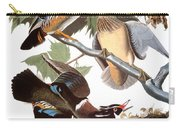 Audubon: Duck Carry-all Pouch