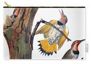 Audubon: Flicker Carry-all Pouch