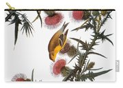 Audubon: Goldfinch Carry-all Pouch by Granger