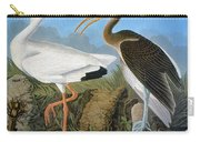 Audubon: Ibis Carry-all Pouch