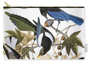Audubon: Jay And Magpie Carry-all Pouch