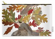 Audubon: Jay Carry-all Pouch