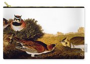 Audubon Lark Carry-all Pouch