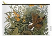 Audubon: Meadowlark Carry-all Pouch