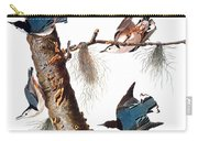 Audubon: Nuthatch Carry-all Pouch