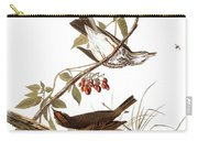 Audubon: Ovenbird Carry-all Pouch