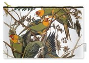 Audubon: Parakeet Carry-all Pouch