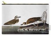 Audubon: Plover, 1827-38 Carry-all Pouch