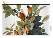Audubon: Robin Carry-all Pouch