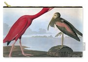 Audubon: Scarlet Ibis Carry-all Pouch