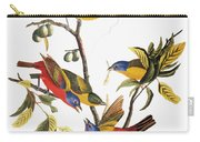 Audubon: Sparrows Carry-all Pouch