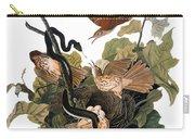 Audubon: Thrasher Carry-all Pouch