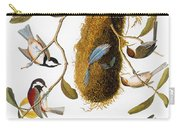Audubon: Titmouse Carry-all Pouch