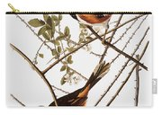 Audubon: Towhee Carry-all Pouch
