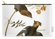 Audubon: Waxwing Carry-all Pouch