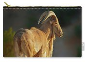 Auodad Sheep  Carry-all Pouch
